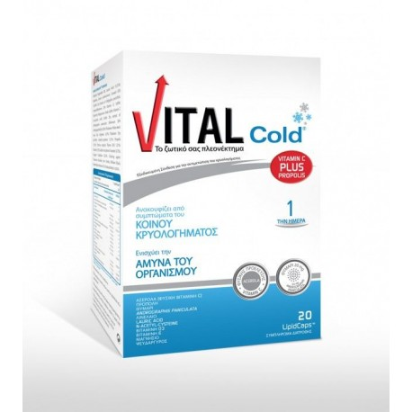 VITAL - COLD PLUS, 20 lipid caps