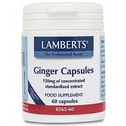 Lamberts - Ginger 120mg, 60 Caps