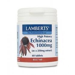 Lamberts - Echinacea 1000mg, 60 Tabs