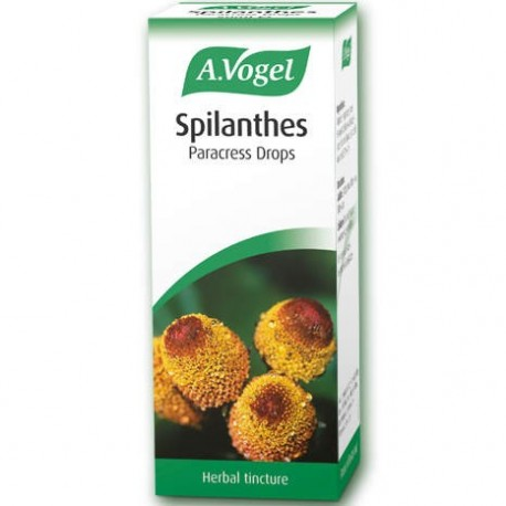 A.VÓGEL - Spilanthes oler. 50ml
